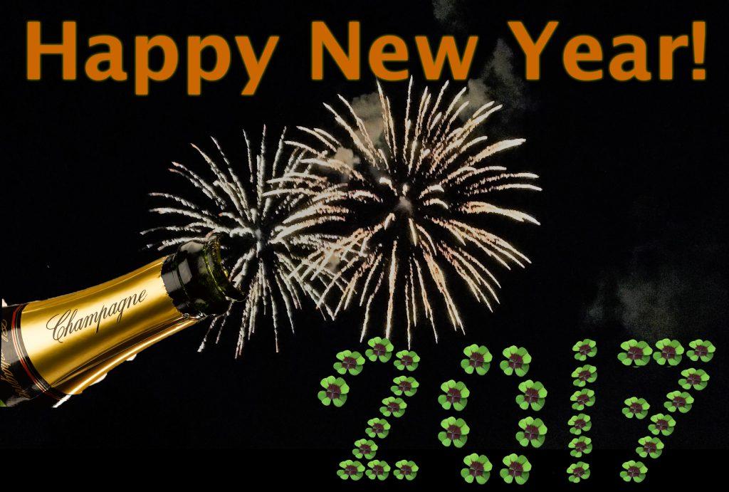 Happy New Year! 16/17
