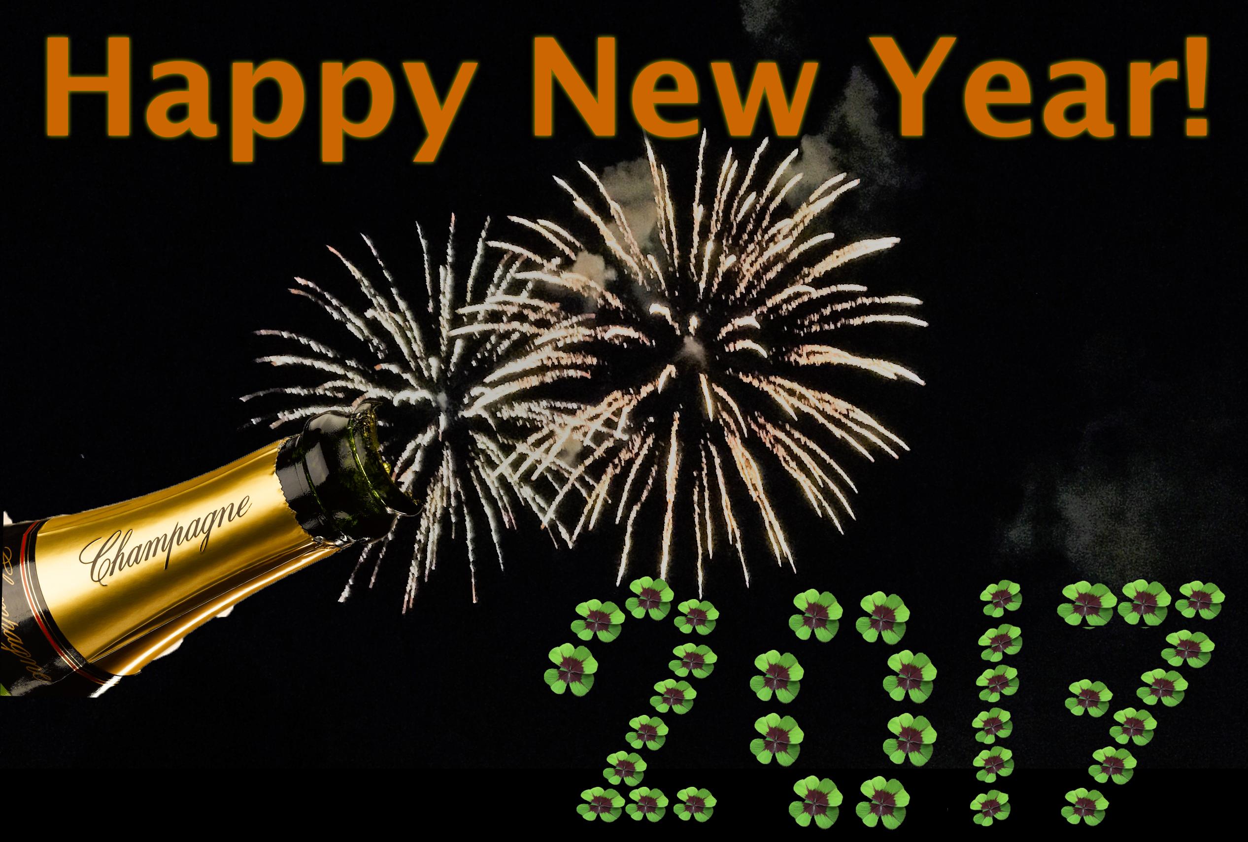 Gelukkig Nieuwjaar Loeff Bloemen Bloemist Gorinchem