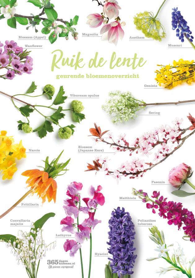Ruik_Lente_Poster