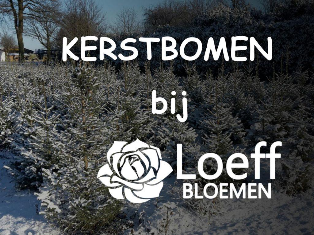 Kerstbomen_2018